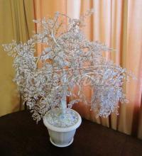 Сніжне бісерне дерево