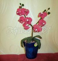 Купить орхидею из бисера