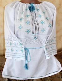 Жіноча вишита блуза Волошка фото
