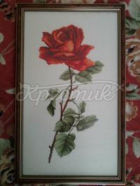 """Вышитая картина """"Роза"""" купить"""