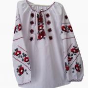 Жіноча вишиванка в українському стилі купити