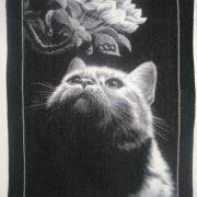 """Вышитая крестом картина """"Кот с магнолией"""""""